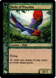 V8 = Discounts when you buy more cards! MAGIC the GATHERING ISLAND